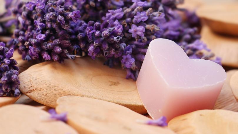 lavender-2443220_1920.jpg